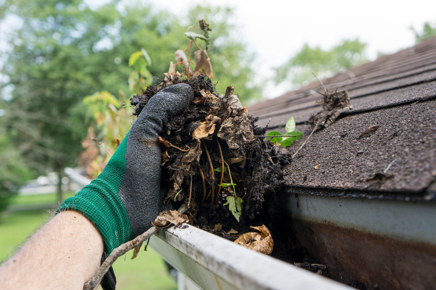 Reasons-to-Keep-Your-Gutters-Free-of-Debris