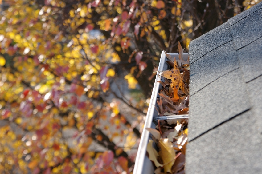 Tips-for-Safe-and-Effective-Gutter-Cleaning